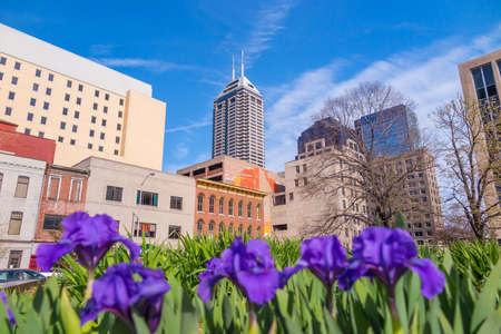 highrises: Downtown Indianapolis skyline with blue sky and flowers