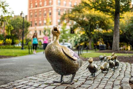 유명한 오리 가족 황동 동상 보스턴 공공 정원 스톡 콘텐츠