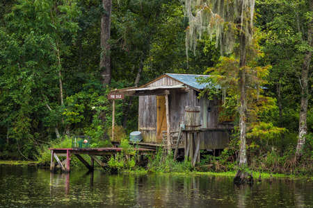 old and new: Old house in a swamp in New Orleans Louisiana USA Editorial