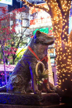 continued: TOKYO, JAPAN - JANUARY 9: Hachiko statue in Shibuya Tokyo on January 9, 2016. Hachiko was remembered for his remarkable loyalty to his owner which continued for many years after his owners death.