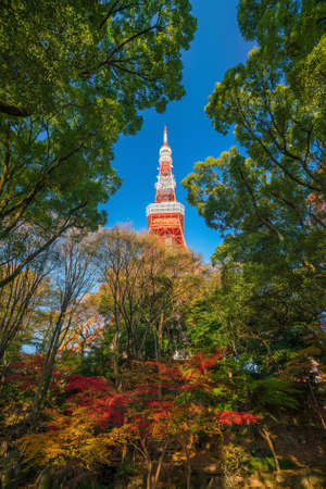 Tokyo Tower with blue sky in Japan