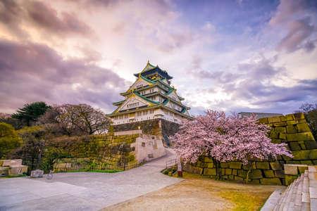 Osaka Castle with full bloom of Sakura in Japan 스톡 콘텐츠
