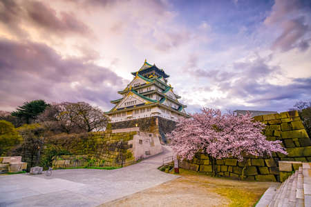 Osaka Castle with full bloom of Sakura in Japan Banque d'images