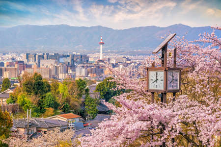 Kyoto city skyline with sakura in Japan