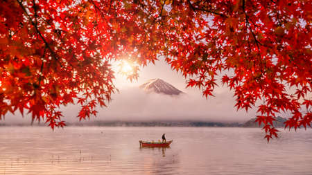 Colorful autumn season and Mountain Fuji with red leaves at lake Kawaguchiko in Japan 報道画像