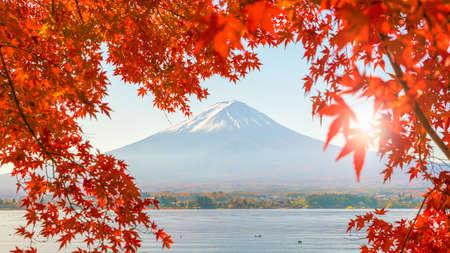 Colorful autumn season and Mountain Fuji with red leaves at lake Kawaguchiko in Japan Stock Photo