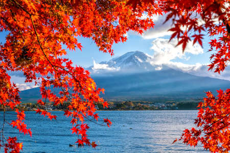 Colorful autumn season and Mountain Fuji with red leaves at lake Kawaguchiko in Japan Stock Photo - 107474488