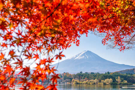 Colorful autumn season and Mountain Fuji with red leaves at lake Kawaguchiko in Japan Stock Photo - 107474493
