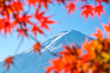 Colorful autumn season and Mountain Fuji with red leaves at lake Kawaguchiko in Japan Stock Photo - 107474499