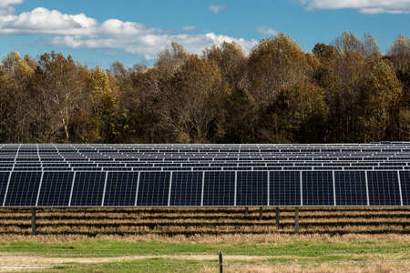 Renewable energy field replaces farm crops in Virginia