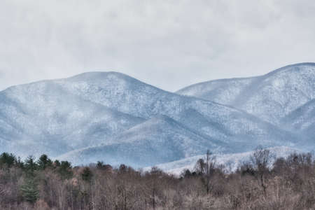 Rugged Appalachian Peaks in Background with fores of trees in Foreground