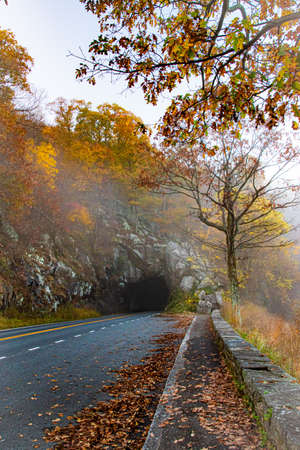 A blue ridge mountain road in fall on foggy morning with colorful leaves