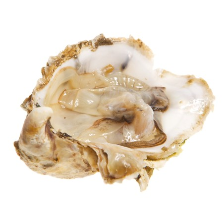 Open one oysters studio isolated on white.