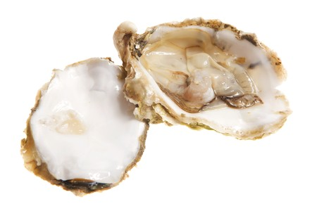 Open oysters studio isolated on white.