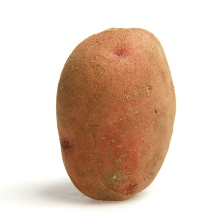 Single potato stands upright isolated on white background with shadow Stock Photo - 11195402