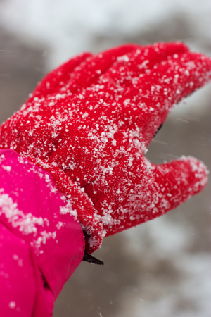 A closeup of a female hand in the red glove covered with falling snow. Stock Photo