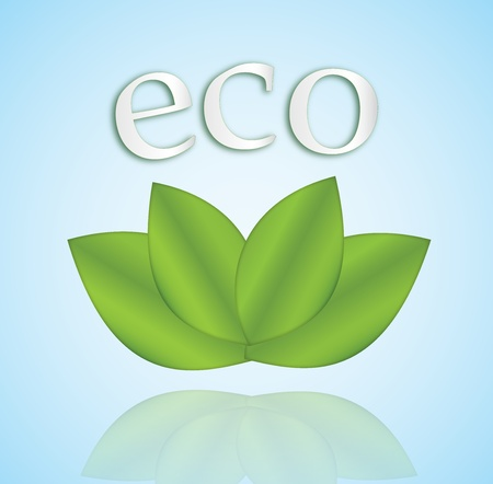 Four leaves and the word 'eco' over them Vector