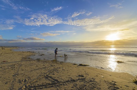 The Pacific beach in San Diego, Southern California, in the United States of America at sunset. A view of a man holding a little child and a dog playing on the golden sandy coast at the ocean.