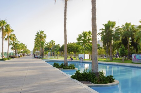 A view of Molos Promenade on the coast of Limassol city in Cyprus. A view of the walk path surrounded by palm trees, pools of water, grass and the Mediterranean sea.