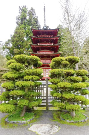japanese tea garden: The Japanese Tea Garden in Golden Gate Park in San Francisco, California, United States of America. A view of the native Japanese and Chinese plants and red pagoda that create a relaxing scenery.