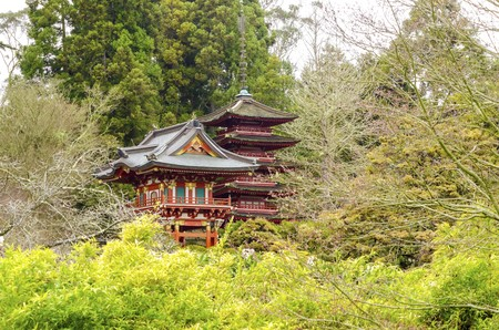 The Japanese Tea Garden in Golden Gate Park in San Francisco, California, United States of America. A view of the native Japanese and Chinese plants and red pagodas that create a relaxing scenery.