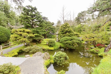 japanese tea garden: The Japanese Tea Garden in Golden Gate Park in San Francisco, California, United States of America. A view of the native Japanese and Chinese plants and pond that create a relaxing scenery.