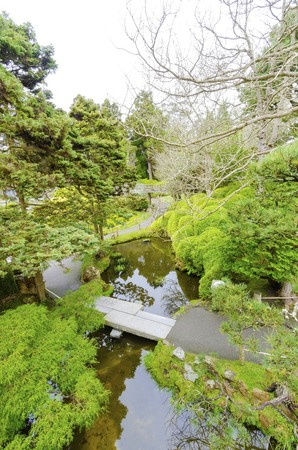 The Japanese Tea Garden in Golden Gate Park in San Francisco, California, United States of America. A view of the native Japanese and Chinese plants and pond that create a relaxing scenery. photo