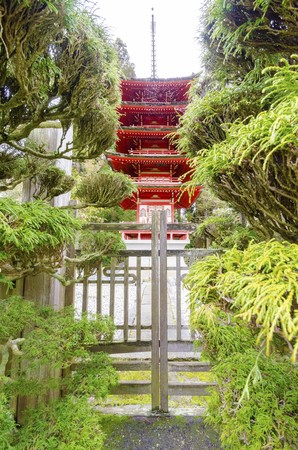 The Japanese Tea Garden in Golden Gate Park in San Francisco, California, United States of America. A view of the native Japanese and Chinese plants and red pagoda that create a relaxing scenery. photo