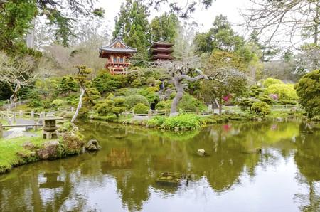 the japanese tea garden: The Japanese Tea Garden in Golden Gate Park in San Francisco, California, United States of America