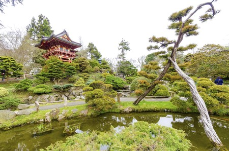 japanese tea garden: The Japanese Tea Garden in Golden Gate Park in San Francisco, California, United States of America. A view of the native Japanese and Chinese plants, red pagodas and pond that create a relaxing scenery. Stock Photo