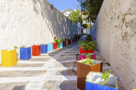 greek island: A typical greek island cobbled alley in Chora, Mykonos, Greece decorated with colourful flower pots of geranium and surrounded by whitewashed architecture.