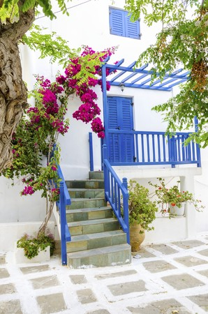 myconos: A very traditional alley view of the architecture in Chora, on the greek island Mykonos, Greece. A blue door, fence and windows, a red bougainvillea and flowers outside a whitewashed house and cobble paved street.
