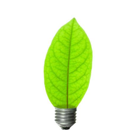 Leaf light bulb