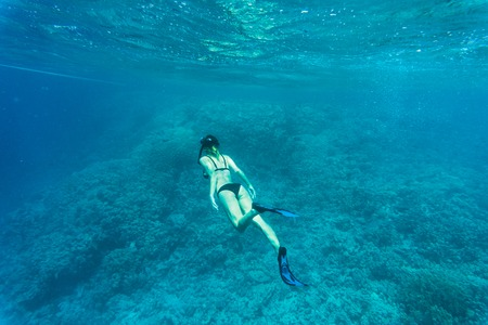 Beautiful coral reef with young freediver woman, underwater life.