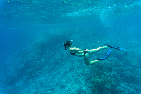 freediving: Free diver gliding underwater over vivid coral reef in a tropical sea
