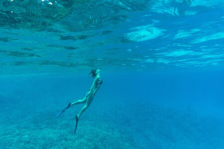 skin diving: Young lady swimming underwater over coral reefs in sea