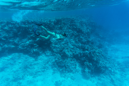 Young woman diving on a breath hold and fining over coral reef in blue sea