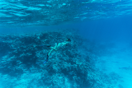 freediving: Young woman diving on a breath hold and fining over coral reef in blue sea