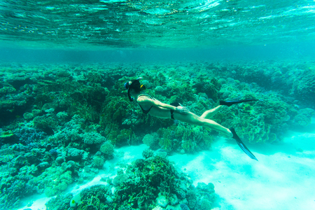 softcoral: Beautiful Woman snorkeler explores coral reef Stock Photo