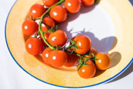 Plate with cherry tomatoes. Agriculture in greenhause Stock Photo