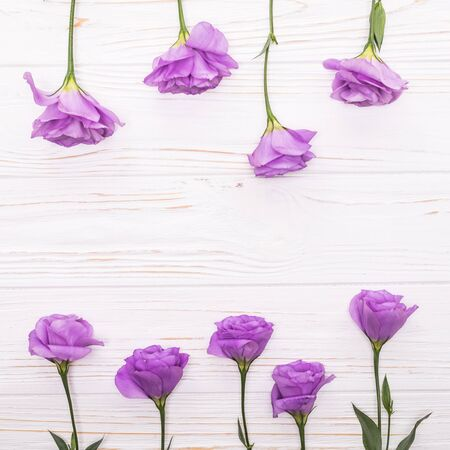 Colorful eustoma flowers on white wooden background and free space for text at the top Stock Photo