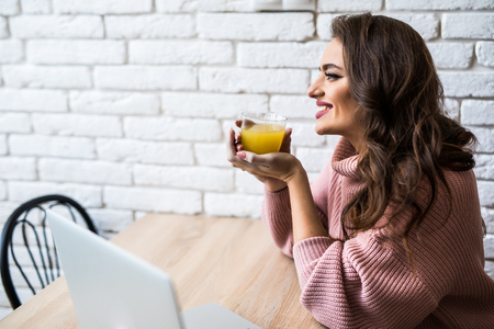 Cute woman having a cup of tea while using her laptop in her kitchen Zdjęcie Seryjne