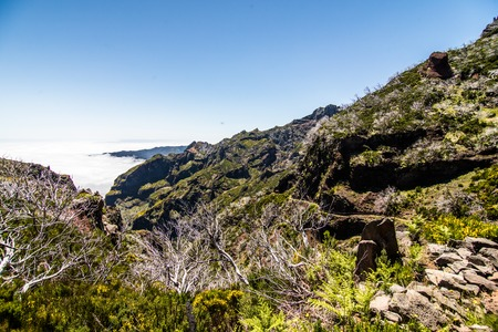 Hiking trail passage from mountain Pico Arieiro to Pico Ruivo, Madeira - burned trees along the path