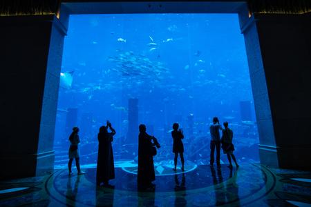 Bigest aquarium with fish with silhouettes of people Archivio Fotografico