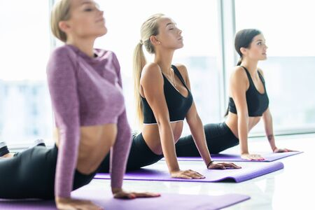 Fitnessgruppe macht Kobra-Pose hintereinander beim Yoga-Kurs Standard-Bild