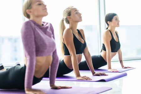 Grupo de fitness haciendo pose de cobra en fila en la clase de yoga Foto de archivo