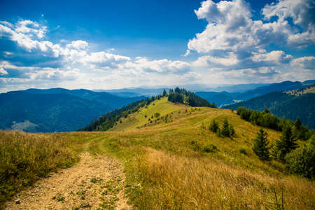 Beautiful mountain landscape in the summer. Carpathian mountains, Ukraine