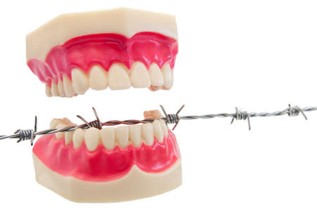 Cut out of denture on barbwire. Stock Photo - 8009385