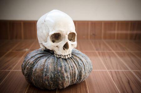 pumkin: vintage style of human skull with pumkin on the beautiful floor