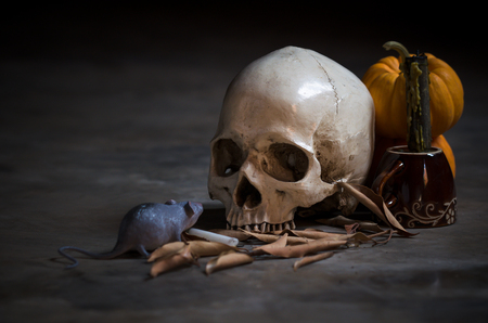 pumkin: still life skull with yellow pumkin and rat in the old day Stock Photo